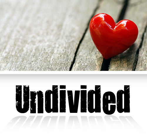 Undivided Conference - CD Set